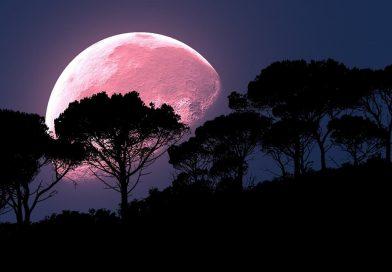 ягодовата луна (розова луна)